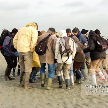 Test sables mouvants dans la baie du Mont-St-Michel à marée basse - Réf : VQFR50-0019 (Q1)