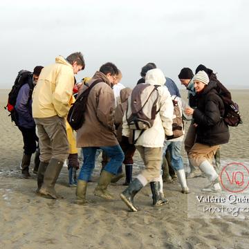 Test de sables mouvants dans la baie du Mont-St-Michel à marée basse - Réf : VQFR50-0020 (Q1)