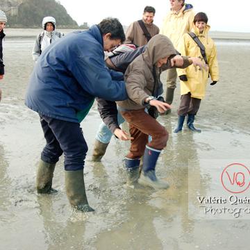 Test de sables mouvants dans la baie du Mont-St-Michel à marée basse - Réf : VQFR50-0024 (Q1)