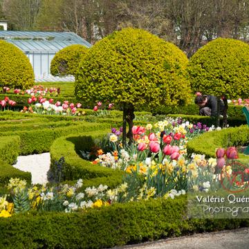 Jardin des plantes, Amiens / Somme / Hauts-de-France - Réf : VQFR80-0012 (Q2)