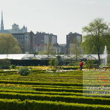 Jardin de plantes, Amiens - Réf : VQFR80-0019