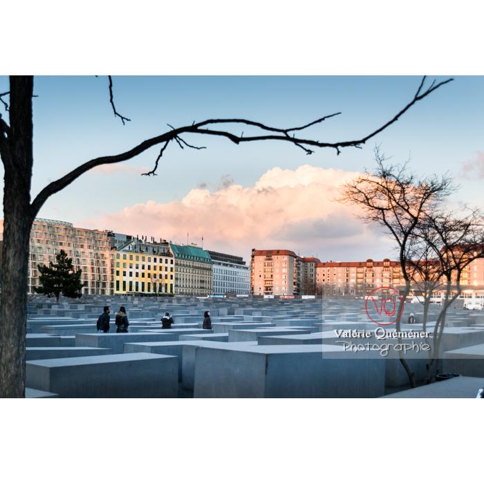 Mémorial aux juifs 'Holocaust Mahnmal' par l'architecte Peter Eisenman, Berlin / Allemagne - Réf : VQALL_BL-0113 (Q3)