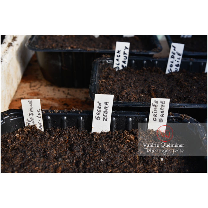 Recyclage barquette alimentaire comme contenant pour semis - Réf : VQF&J-13139 (Q3)