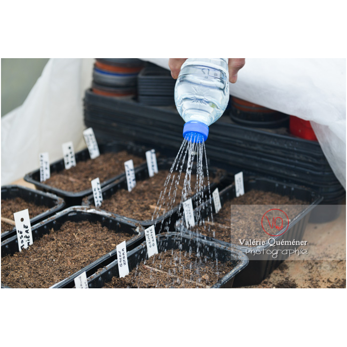 Recyclage d'une bouteille en plastique comme arrosoir pour les semis - Réf : VQF&J-13168 (Q3)