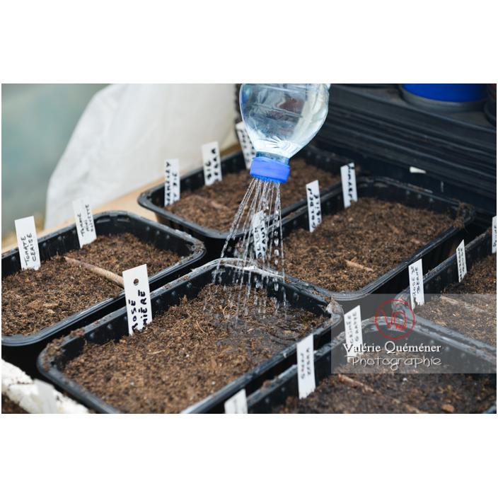 Recyclage d'une bouteille en plastique comme arrosoir pour les semis - Réf : VQF&J-13171 (Q3)