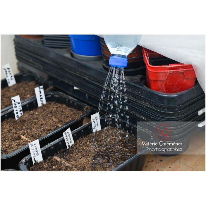 Recyclage d'une bouteille en plastique comme arrosoir pour les semis - Réf : VQF&J-13173 (Q3)