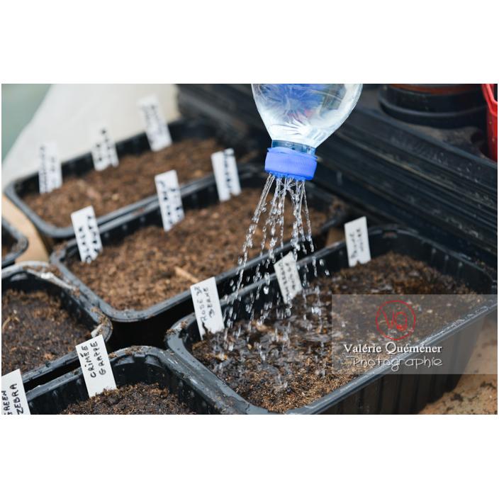 Recyclage d'une bouteille en plastique comme arrosoir pour les semis - Réf : VQF&J-13174 (Q3)