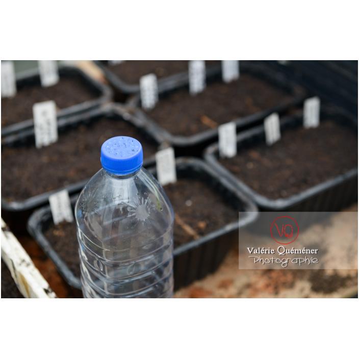 Recyclage d'une bouteille en plastique avec des trous dans le bouchon pour en faire un arrosoir pour les semis - Réf : VQF&J-13185 (Q3)