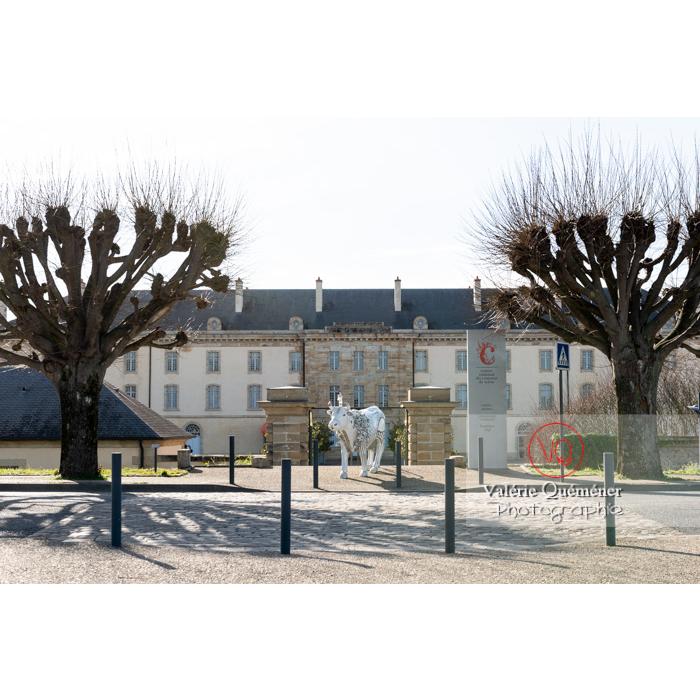 'Divache' devant le CNCS, de MP Benoît-Basset pour l'exposition de sculptures de vaches dans Moulins / Allier / Auvergne-Rhône-Alpes - Réf : VQFR03-0336 (Q3)