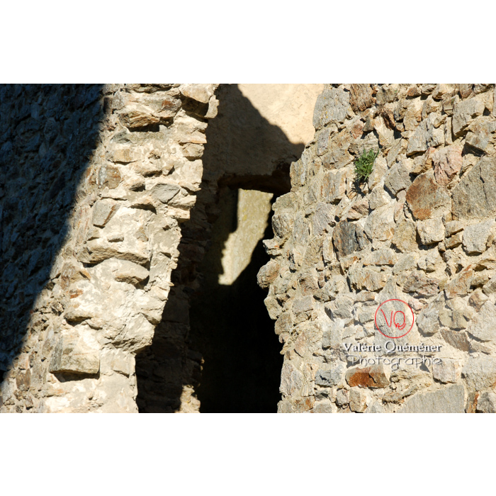 Ruines du château de Saissac en Pays Cathare / Aude / Occitanie - Réf : VQFR11-0090 (Q1)