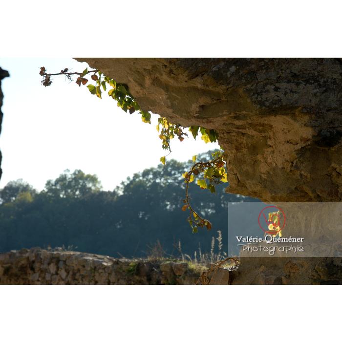 Ruines du château de Saissac en Pays Cathare / Aude / Occitanie - Réf : VQFR11-0093 (Q1)