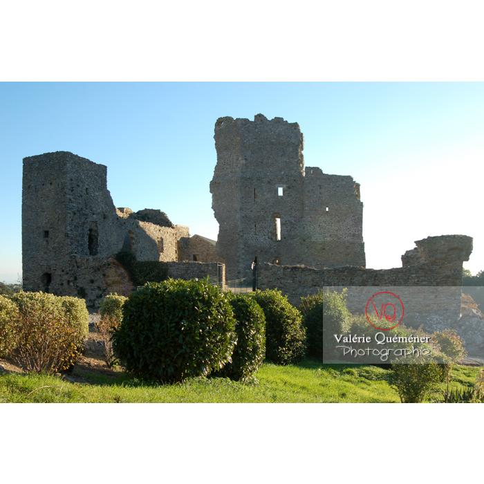 Ruines du château Cathare de Saissac, Montagne Noire et Pays Cathare / Aude / Occitanie - Réf : VQFR11-0119 (Q1)