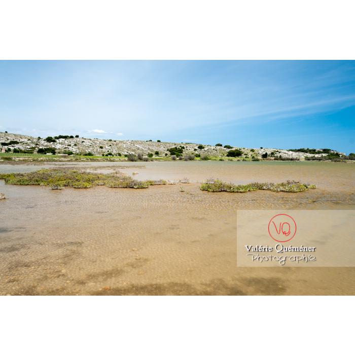 Étang de Bages-Sigean dans le parc naturel régional de la Narbonnaise en Méditerranée / Aude / Occitanie - Réf : VQFR11-0150 (Q2)