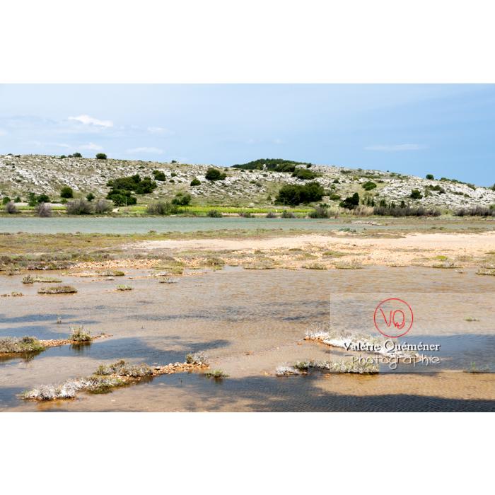 Étang de Bages-Sigean dans le parc naturel régional de la Narbonnaise en Méditerranée / Aude / Occitanie - Réf : VQFR11-0151 (Q2)