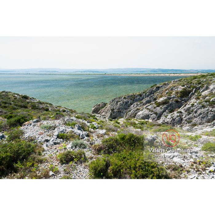 Étang de Bages-Sigean dans le parc naturel régional de la Narbonnaise en Méditerranée / Aude / Occitanie - Réf : VQFR11-0152 (Q2)