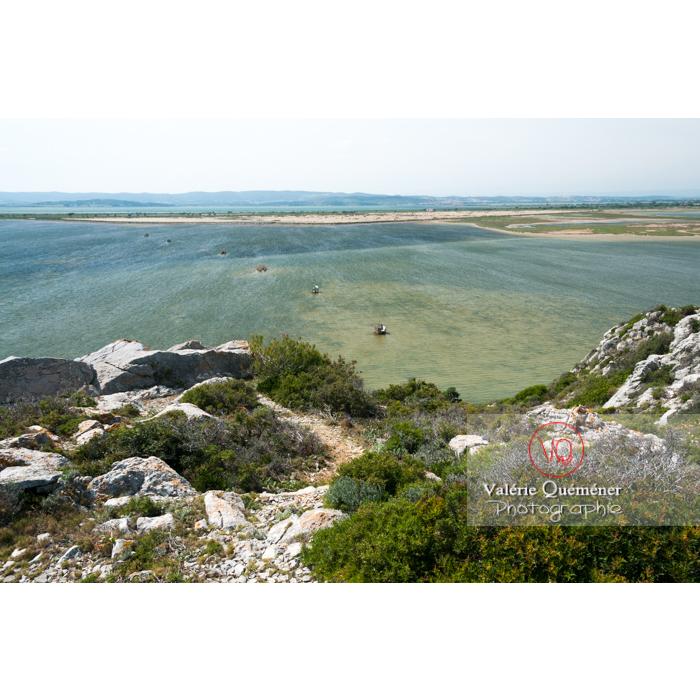 Étang de Bages-Sigean dans le parc naturel régional de la Narbonnaise en Méditerranée / Aude / Occitanie - Réf : VQFR11-0154 (Q2)