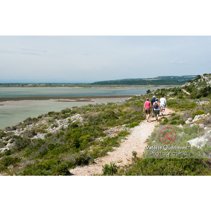 Étang de Bages-Sigean dans le parc naturel régional de la Narbonnaise en Méditerranée / Aude / Occitanie - Réf : VQFR11-0155 (Q2)