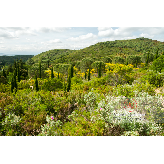 Paysage de l'Abbaye de Fontfroide (MH) / Aude / Occitanie - Réf : VQFR11-0177 (Q2)