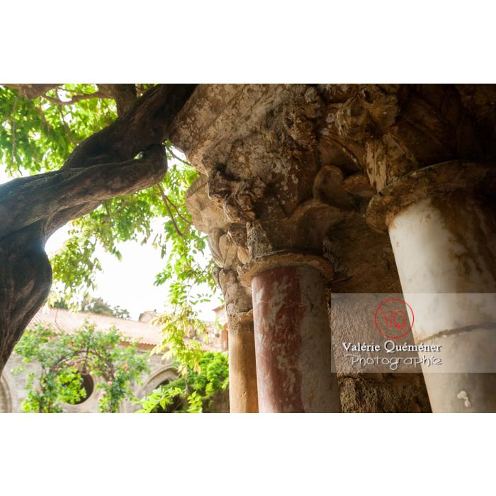 Détail du cloître de l'Abbaye de Fonfroide (MH) / Aude / Occitanie - Réf : VQFR11-0198 (Q2)
