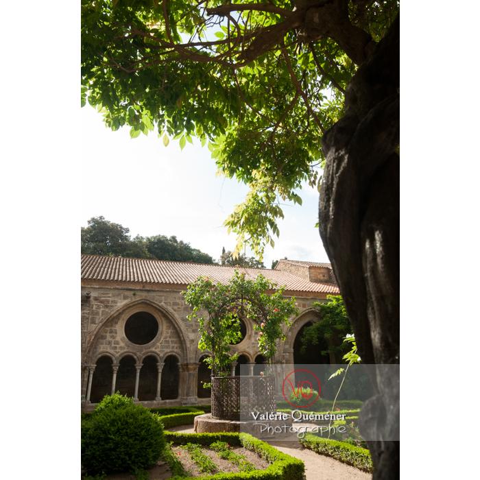 Cloître de l'Abbaye de Fontfroide (MH) / Aude / Occitanie - Réf : VQFR11-0199 (Q2)