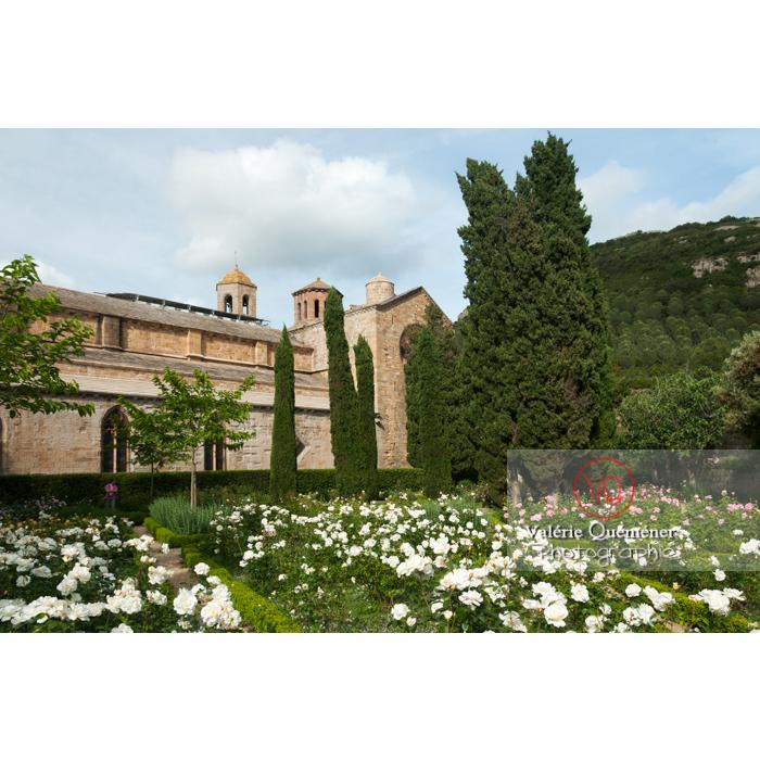 Roseraie de l'Abbaye de Fonfroide / Aude / Occitanie - Réf : VQFR11-0201 (Q3)