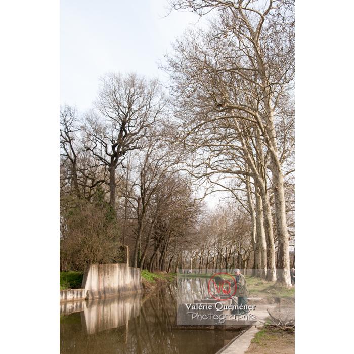 Canal du Midi proche du seuil de Naurouze / Aude / Occitanie - Réf : VQFR11-0300 (Q2)