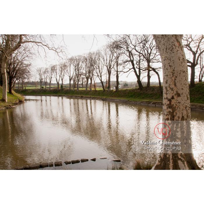 Rigole de la plaine débouchant dans le canal du Midi au niveau du seuil de Naurouze / Aude / Occitanie - Réf : VQFR11-0302 (Q2)