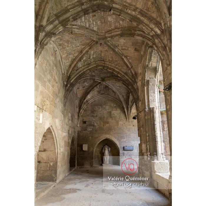 Cloître de la cathédrale St-Just-et-St-Pasteur, à Narbonne / Aude / Occitanie - Réf : VQFR11-0351 (Q3)