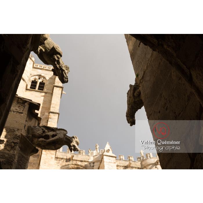 Silhouettes des gargouilles de la cathédrale St-Just-et-St-Pasteur, à Narbonne / Aude / Occitanie - Réf : VQFR11-0352 (Q3)