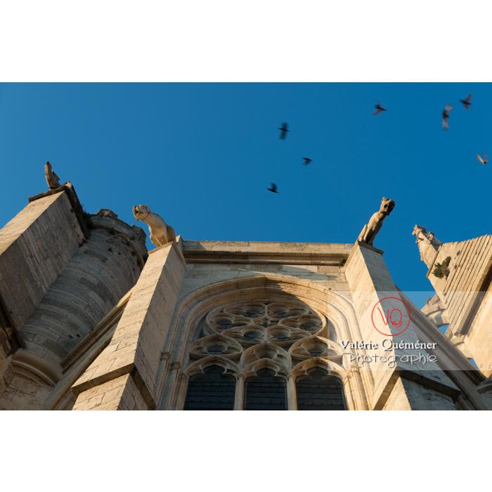 Contre-plongée sur les gargouilles de la cathédrale St-Just-et-St-Pasteur, à Narbonne / Aude / Occitanie - Réf : VQFR11-0409 (Q3)