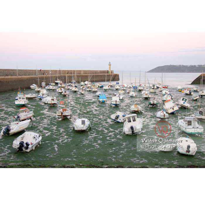 Port de Binic à marée basse / Côtes d'Armor / Bretagne - Réf : VQFR22-0149 (Q1)