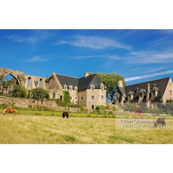Prairie au bord de l'abbaye de Beauport à Kerity, commune de Paimpol / Côtes d'Armor / Bretagne - Réf : VQFR22-0174 (Q1)