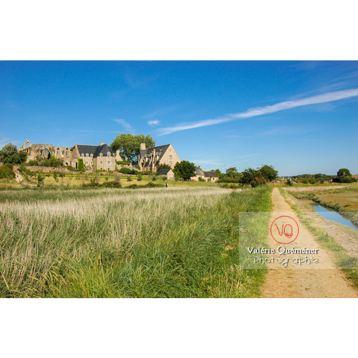 Abbaye de Beauport (MH) / Côtes d'Armor / Bretagne - Réf : VQFR22-0176 (Q1)