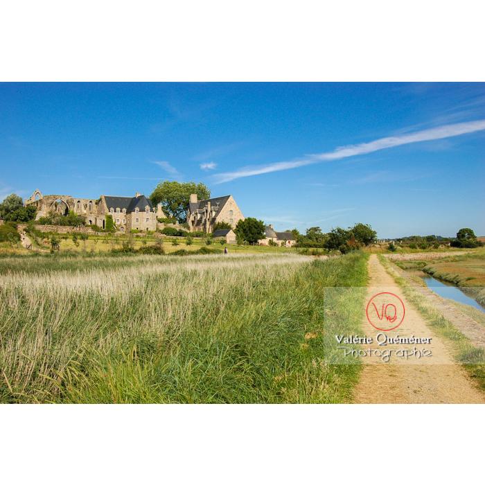 Sentier en bas de l'abbaye de Beauport (MH) à Kerity, commune de Paimpol / Côtes d'Armor / Bretagne - Réf : VQFR22-0176 (Q1)