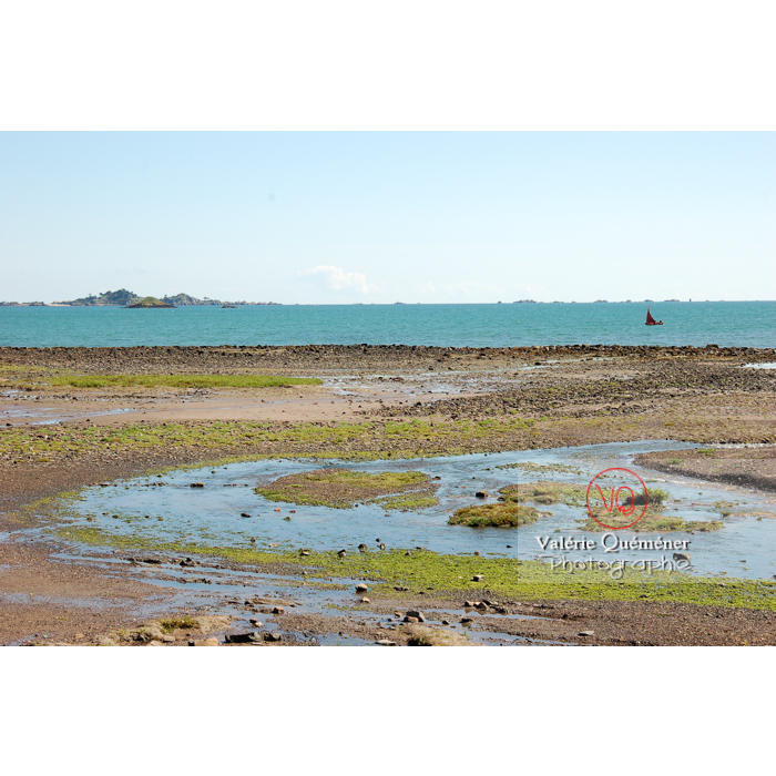 Baie de Paimpol / Côtes d'Armor / Bretagne - Réf : VQFR22-0177 (Q1)