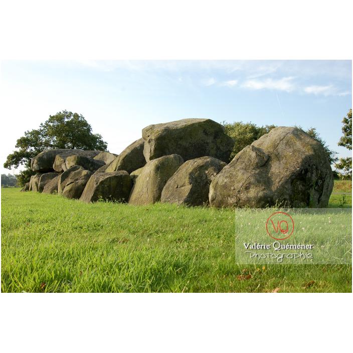 Allée couverte à Ploufragan / Côtes d'Armor (22) / France - Réf : VQFR22-0194 (Q3)