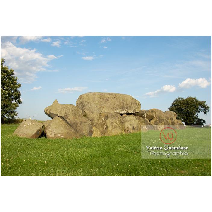 Allée couverte à Ploufragan / Côtes d'Armor (22) / France - Réf : VQFR22-0195 (Q3)