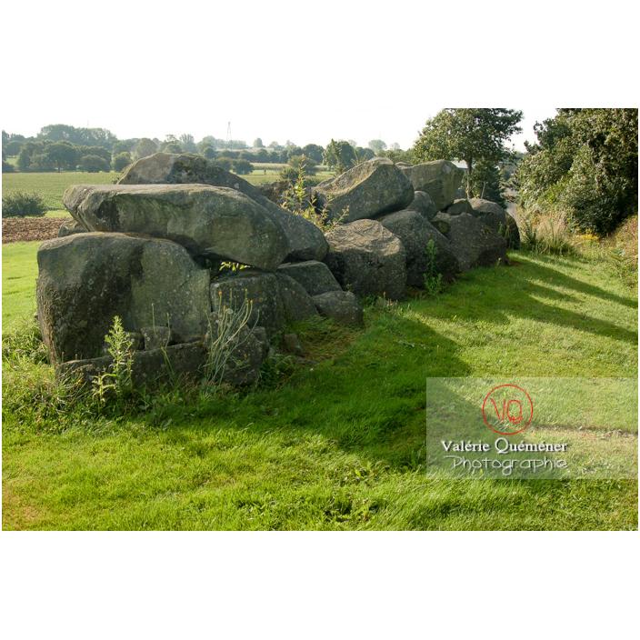 Allée couverte à Ploufragan / Côtes d'Armor (22) / France - Réf : VQFR22-0198 (Q3)