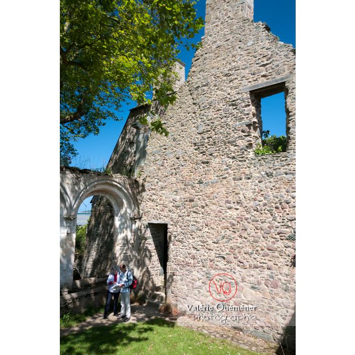Ruines du réfectoire de l'abbaye de Beauport (MH) à Kerity, commune de Paimpol / Côtes d'Armor / Bretagne - Réf : VQFR22-0289 (Q2)