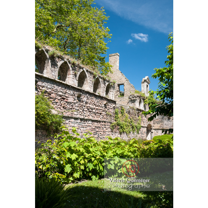 Abbaye de Beauport (MH) / Côtes d'Armor / Bretagne - Réf : VQFR22-0291 (Q2)