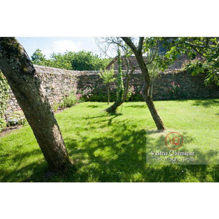 Jardin à l'abbaye de Beauport à Kerity, commune de Paimpol / Côtes d'Armor / Bretagne - Réf : VQFR22-0293 (Q2)