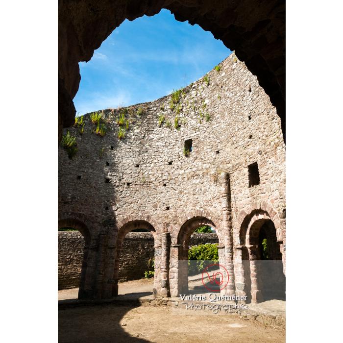 Église Sainte-Marie dite temple de Lanleff / Côtes d'Armor / Bretagne - Réf : VQFR22-0300 (Q2)
