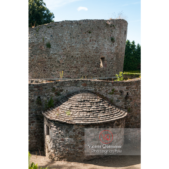 Église Sainte-Marie dite temple de Lanleff / Côtes d'Armor / Bretagne - Réf : VQFR22-0303 (Q2)