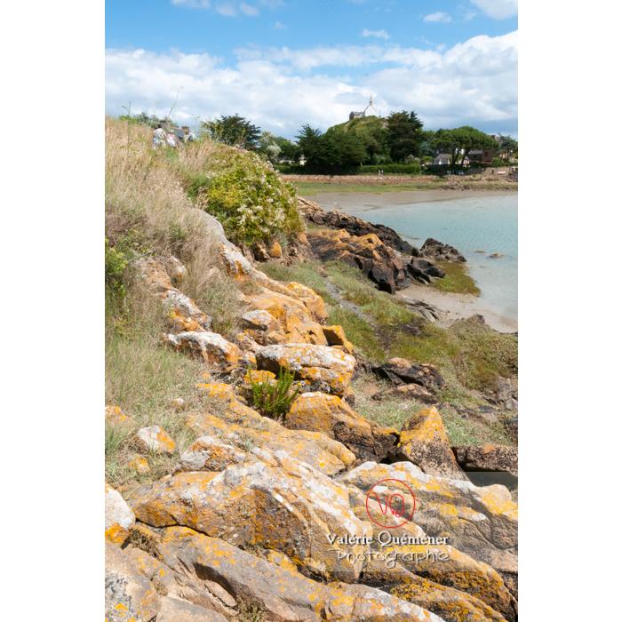 Île de Bréhat / Côtes d'Armor / Bretagne - Réf : VQFR22-0403 (Q2)