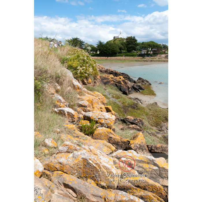Retenue d'eau de l'île de Bréhat / Côtes d'Armor / Bretagne - Réf : VQFR22-0403 (Q2)