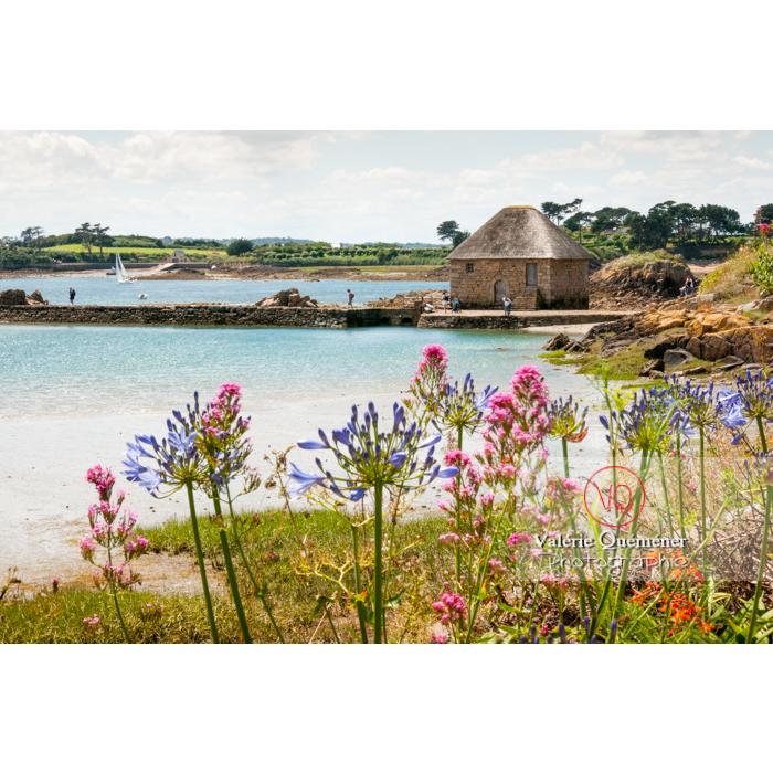 Moulin à marée sur l'île de Bréhat / Côtes d'Armor / Bretagne - Réf : VQFR22-0404 (Q2)