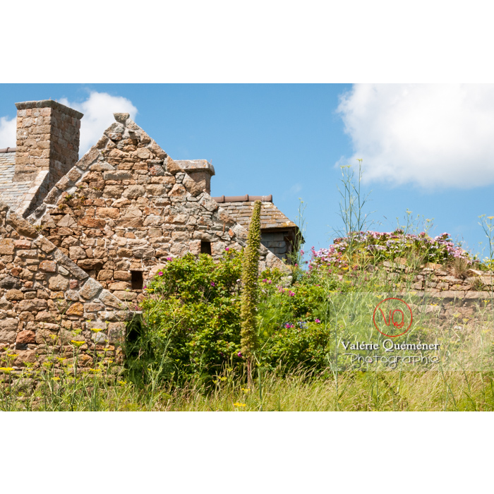 Façade de maison en pierre sur l'île de Bréhat / Côtes d'Armor / Bretagne - Réf : VQFR22-0408 (Q2)