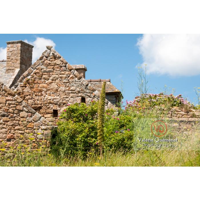 Maisons en pierre sur l'île de Bréhat / Côtes d'Armor / Bretagne - Réf : VQFR22-0408 (Q2)