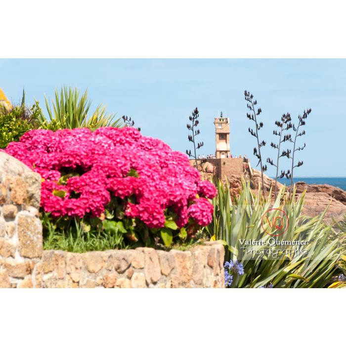 Phare du Paon à travers la flore sur l'île de Bréhat / Côtes d'Armor / Bretagne - Réf : VQFR22-0411 (Q2)