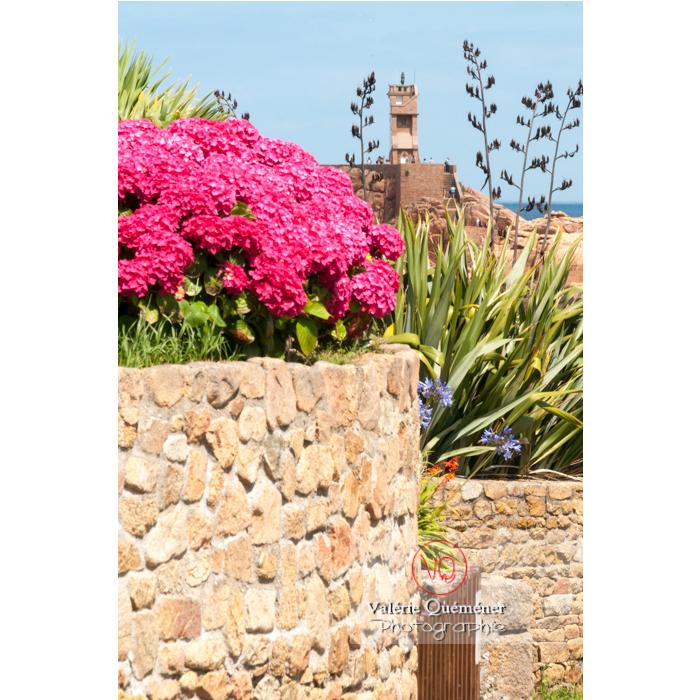 Phare du Paon à travers la flore sur l'île de Bréhat / Côtes d'Armor / Bretagne - Réf : VQFR22-0412 (Q2)
